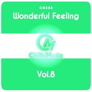 Various - Wonderful Feeling Vol 8