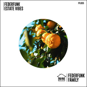 FederFunk - Estate Vibes