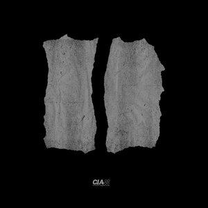 Total Science/L-Side - Fallen Angel/Untouchable