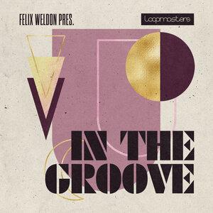 Felix Weldon - In The Groove (Sample Pack WAV)