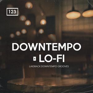Bingoshakerz - Downtempo & Lo-Fi (Sample Pack WAV/REX/MIDI)