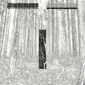 Chris Liebing/Ralf Hildenbeutel feat Miles Cooper Seaton - Fault Line (Plaid Remix)