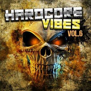 Various - Hardcore Vibes Vol 6
