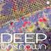 Deep Unknown