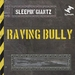 Raving Bully