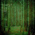 Forest Echo One