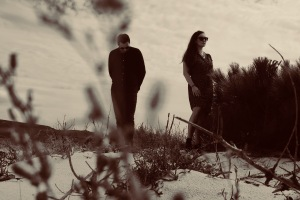 Local Suicide: February 2019 Charts