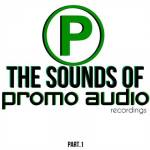 Promo Audio Recordings