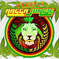 STRICTLY RAGGA JUNGLE RADIO TOP 20