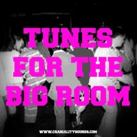 B.Jinx: Tunes For The Big Room (Vol. 1 & 2)