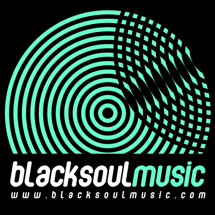 BLACKSOUL feat RITHMA - Not Another Love Song