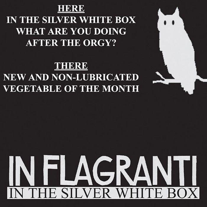 IN FLAGRANTI - In The Silver White Box EP