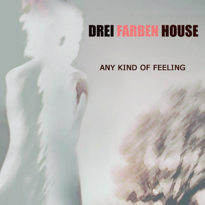 DREI FARBEN HOUSE - Any Kind Of Feeling