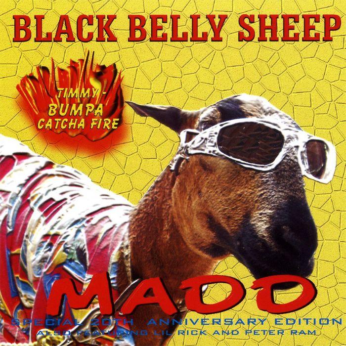 MADD/VARIOUS - Black Belly Sheep