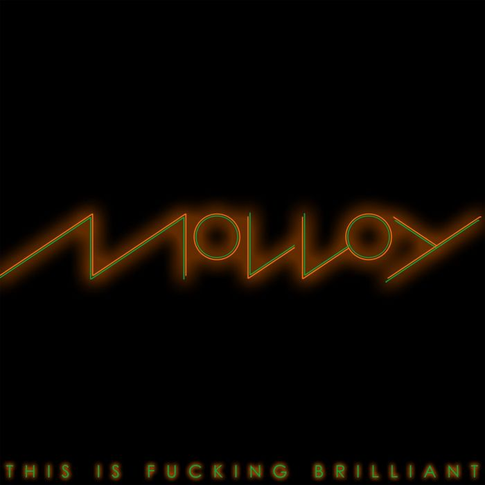 MOLLOY - This Is Fucking Brilliant