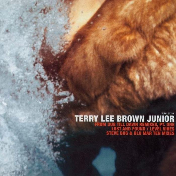 BROWN, Terry Lee Junior - From Dub Til Dawn (remixes)