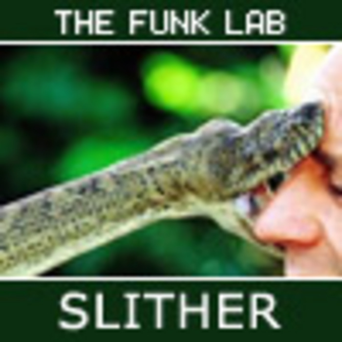 FUNK LAB, The - Slither