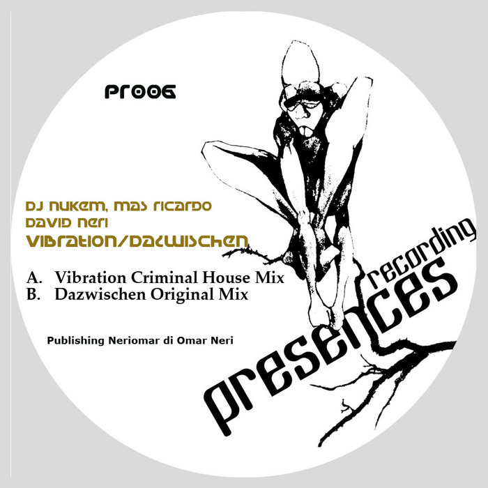 DJ NUKEM/DAVID NERI/MAS RICARDO - Vibration