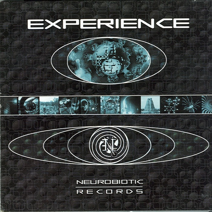 VARIOUS - Experience