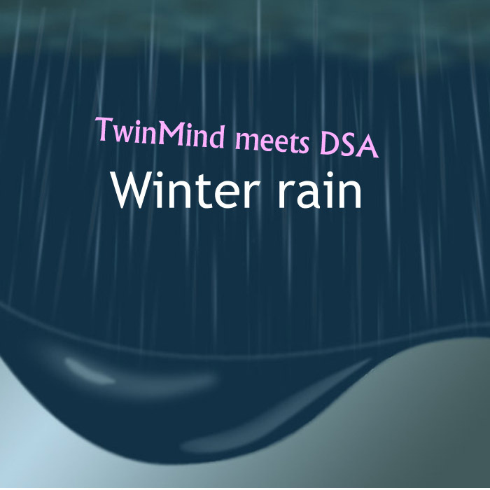 TWINMIND meets DSA - Winter Rain