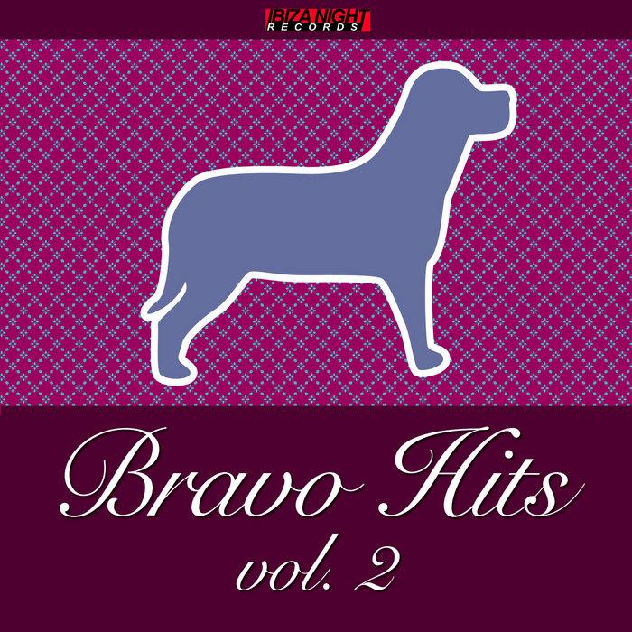 VARIOUS - Bravo Hits Vol 2