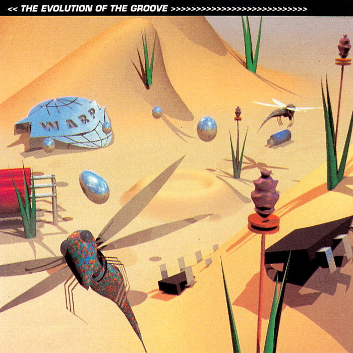 VARIOUS - The Evolution Of The Groove