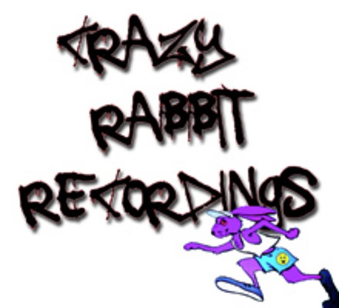 DJ PURPLE RABBIT feat SHITOK - Talkin Shit