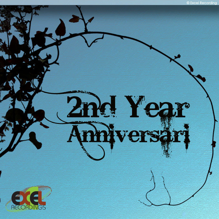 VARIOUS - Excel Recordings 2nd Anniversary Selected Works