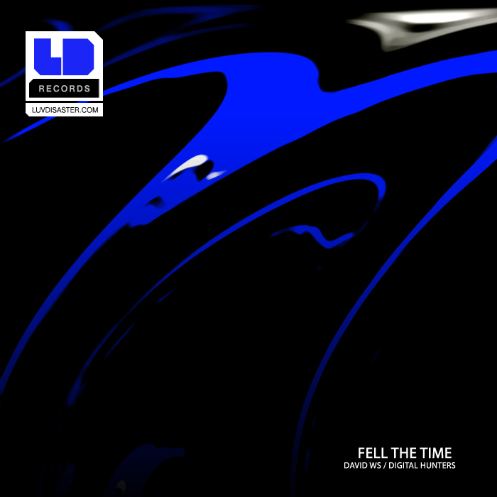 DIGITAL HUNTERS/DAVID WS - Feel The Time