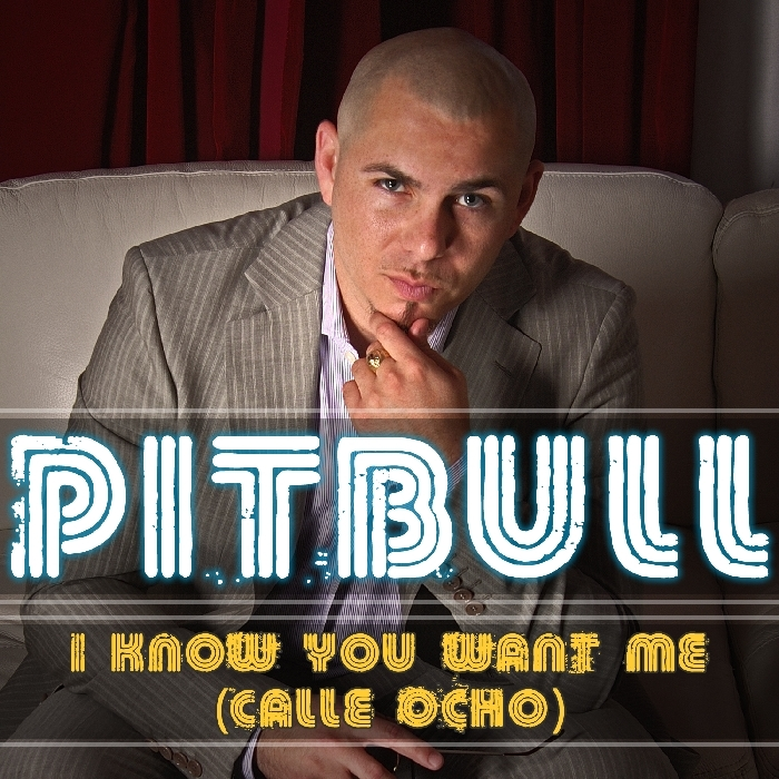 I KNOW YOU WANT ME DESCARGAR MP3