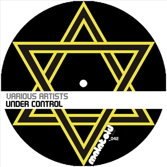 PETRIN, Joseph/MISHA SMYKK/DIE HAUSTIERE/NEVER TRUST DJS - Under Control
