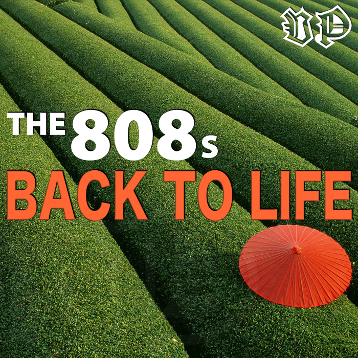 808s, The - Back To Life