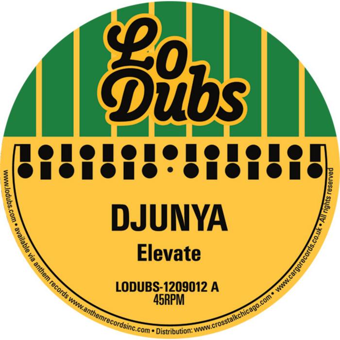 DJUNYA - Elevate
