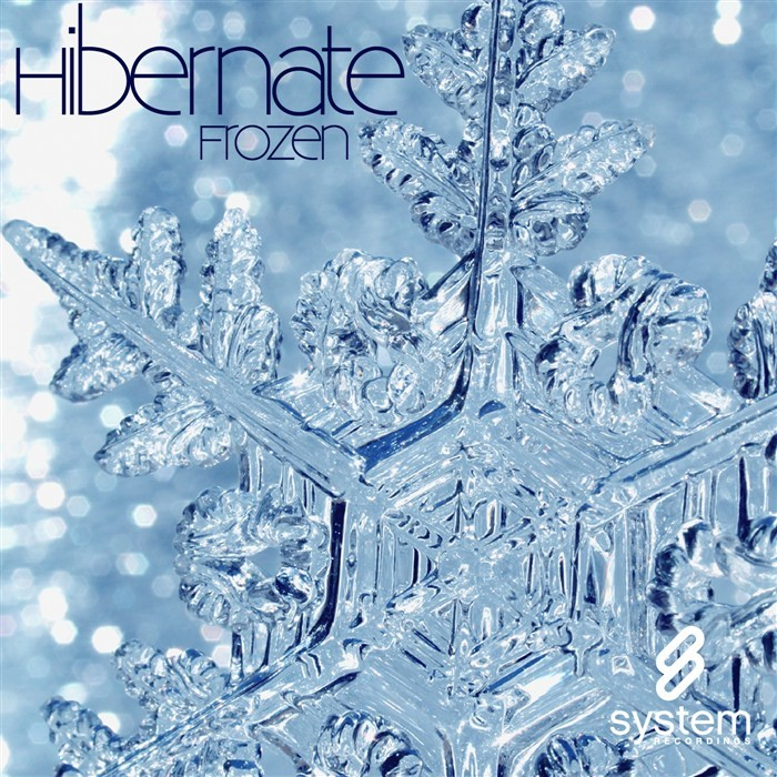 HIBERNATE - Frozen