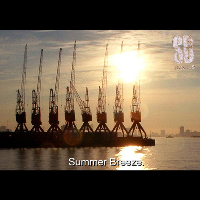 VARIOUS - Summer Breeze