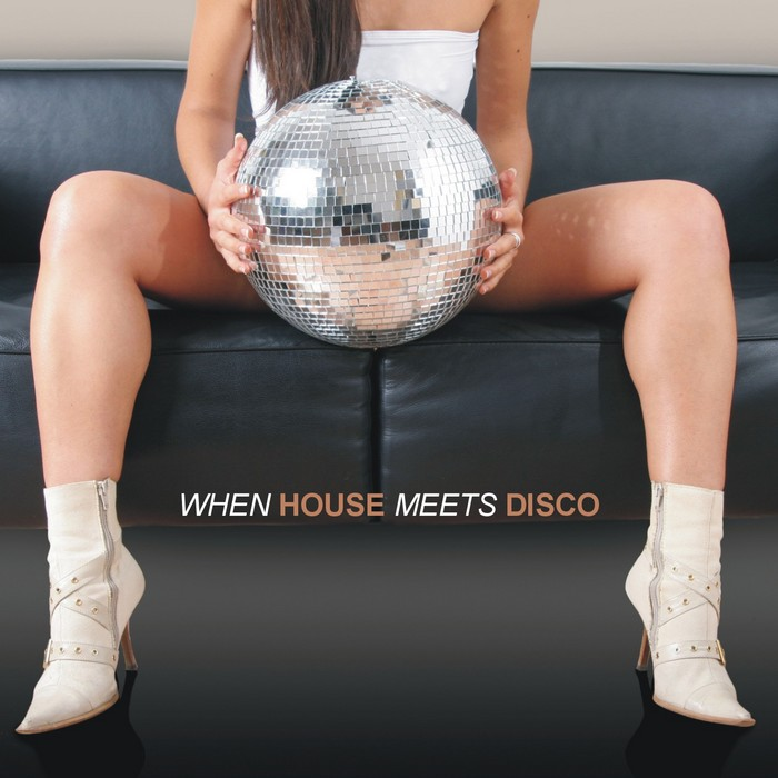 VARIOUS - When House Meets Disco (unmixed tracks)