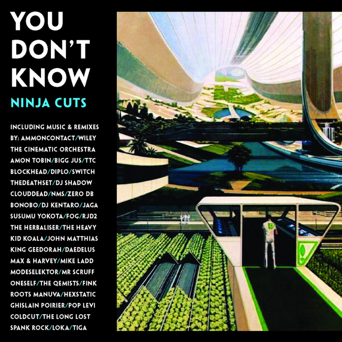 VARIOUS - You Don't Know (Ninja Cuts) (unmixed tracks)