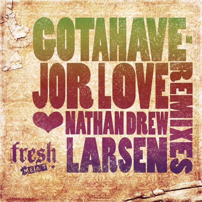 LARSEN, Nathan Drew - Gotahavejor Love (remixes)