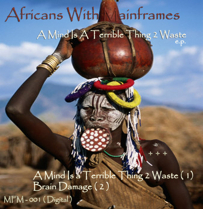 A Mind Is Terrible Thing 2 Waste By Africans With Mainframes On