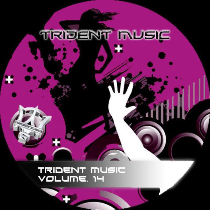 VARIOUS - Trident Music Volume 14