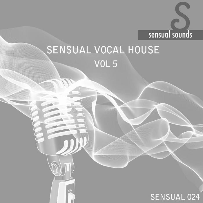 VARIOUS - Sensual Vocal House # 5