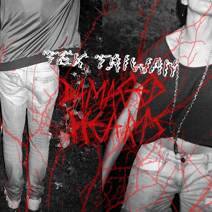TEX TAIWAN - Damaged Hearts
