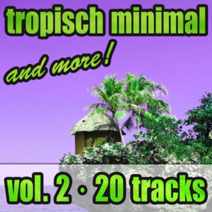 VARIOUS - Tropisch Minimal & More Vol 2
