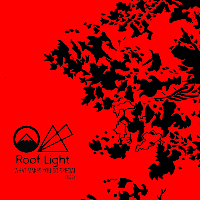 ROOF LIGHT - What Makes You So Special