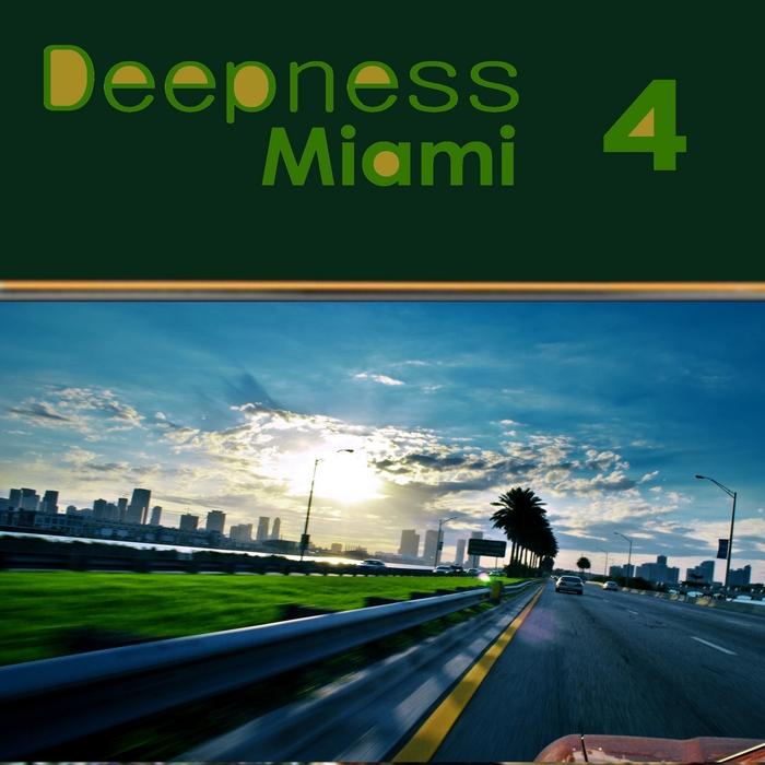 VARIOUS - Deepness Miami 4