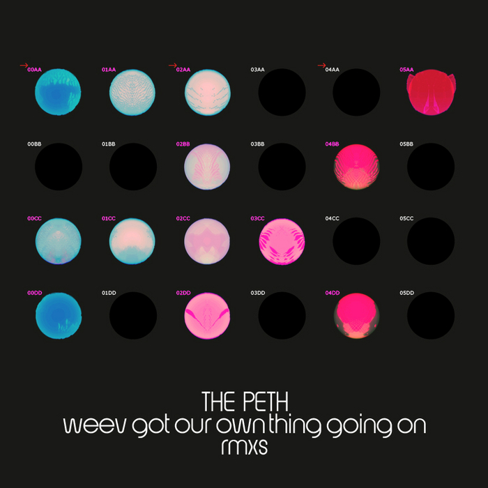 THE PETH - Weev Got Our Own Thing Going On