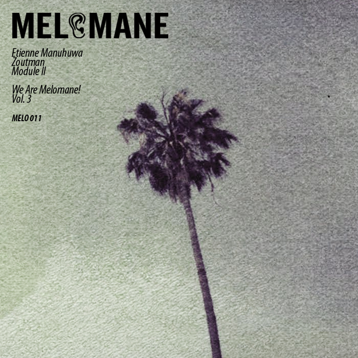 MODULE II/ETIENNE MANUHUWA/ZOUTMAN - We Are Melomane! Volume 3