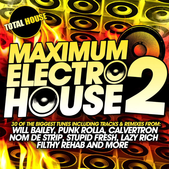VARIOUS - Maximum Electro House Vol 2
