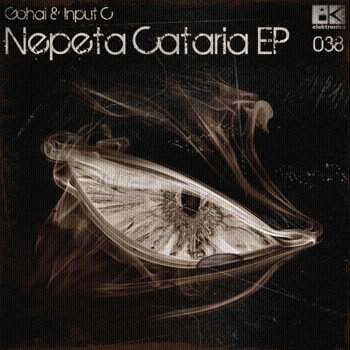GOHAI/INPUT C - Nepeta Cataria EP