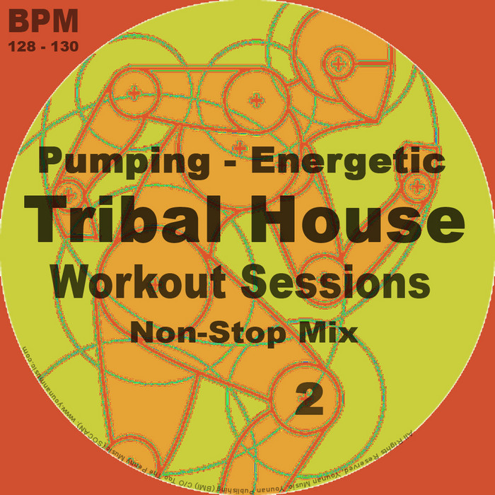 VARIOUS - Tribal House Workout Sessions Vol 2 (unmixed tracks & continuous DJ mix)